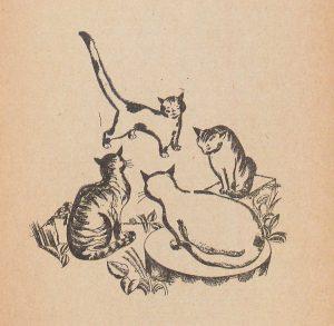 Quand Fedor Rojankovsky dessinait des chats pour Sacha Tcherny